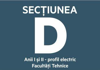 Secțiunea D
